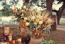 Wedding Ideas / by Hannah Brenneman