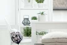 Pearl Birches House  [Interior Design - Styling - Photography by Iro - Ivy Nassopoulos ] / by Iro - Ivy Nassopoulos