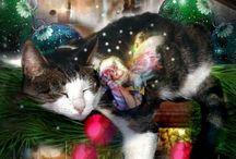 CHRISTMAS TIME  / by Sheila Juarez