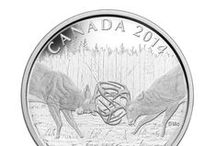 Nature and Wildlife / Canada's majestic landscape, and diverse flora and fauna, are a favourite coin theme for collectors in Canada, and from around the world. / by Royal Canadian Mint