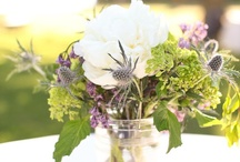 Centerpieces / by Jill C. Fisher