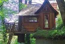 Tree house ideas  / Welcome to Dream Yard's Pinterest board of tree house pictures. We have lots of treehouse ideas for those looking to build a tree house. Thanks for visiting us and hopefully you get a chance to visit some of our other landscaping boards.   / by dreamyard