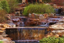 Backyard waterfalls and streams / Welcome to Dream Yard's Pinterest board for waterfall ideas. For those of you building waterfall features in your backyard, this is a great place to find some cool waterfall designs. Thanks for stopping by and hopefully you get a chance to check out some more landscaping pictures on our other boards.  / by dreamyard