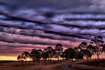 Clouds / by Michelle Marshall