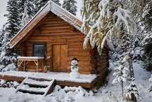 A Northwoods Cabin  / Just a place to keep all the ideas for my future cabin. / by Craig Caugh