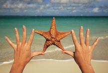 Beachy ideas / Beach, beach getaway, peace / by Dawn Carpenter