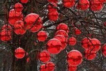 holidays / by Rosie Viegas