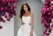 Spring 2013 Mikaella Wedding Dresses / by Mikaella Bridal