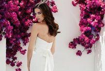 Spring 2013 Mikaella Wedding Dresses / by Mikaella Bridal