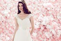 Spring 2014 Mikaella Wedding Dresses / by Mikaella Bridal