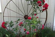 Future Garden! / cant wait to garden around the house! / by Lauren Manchester