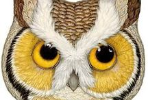Owls / Owls to draw, inspire and enjoy / by Freemotion by the River