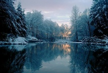 Winter Wonderland / by Uncommon Places
