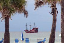 Florida!! / by Mandy Lendon