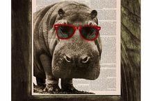 I LOVE HIPPOS! / by Susan Harris