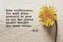 Just life. / by Amanda Morrison
