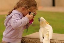 Cute~Ness! / by Jennifer Lowery