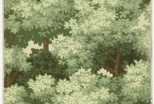 Trees / by Natalie Ryan