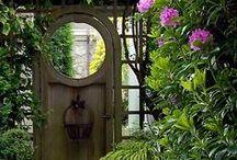 home - outside / by Lisa Bronwyn