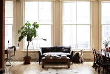 Amazing Spaces / by Jenny Jenkins