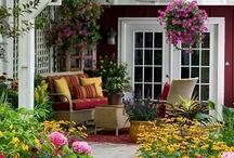 Backyard / by Jan