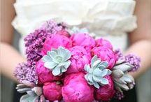 Wedding Bouquet Ideas  / by Allie Wilson