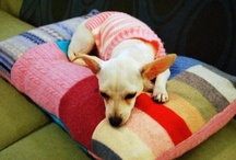 DIY For The Dogs / Fun dog gear, toys, and items you can make it yourself!  / by NewfandHound