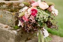 Flowers & Succulents / by David Pressman Events LLC