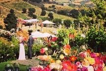 Classic Weddings / by David Pressman Events LLC