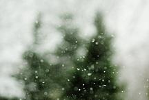 Let It Snow / by Debra Eby