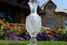 2013 Solheim Cup Red, Blue, and You! / by Kelly Kirchmar Heger