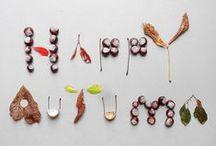 {autumn} / by Zoe Gotts