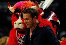 Benny the Bull / This board is a snippet of his misadventures, past and present. To see what's in that fuzzy red head of his, follow  @BennytheBull on Twitter. For more goodies, check out iwantbenny.com. / by Chicago Bulls