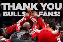 The Fans / by Chicago Bulls