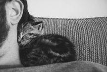 Sleepsleepsleep / by Mariska Wildeman