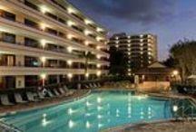 Rosen Inn at Pointe Orlando / by Rosen Hotels & Resorts Orlando, Florida