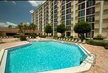 Rosen Inn Closest to Universal / by Rosen Hotels & Resorts Orlando, Florida