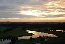 Sunrise to Sunset at Rosen Hotels & Resorts / by Rosen Hotels & Resorts Orlando, Florida
