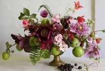 flowers / by Tiffany Robinson