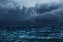 Wild Water Wonder / by Debbie Dierkes