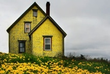 Beautiful Pics / by Applesauce Inn Bed and Breakfast