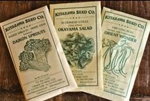 ♥ seed packets   seed catalogues / by susana