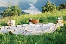 ♥ picnics / by susana
