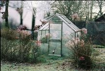 ♥ greenhouses / by susana