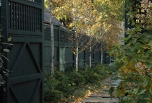 Mitchell / New Home Landscaping / by Jennifer Tippett