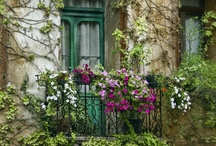 curb appeal / on the outside looking in / by Shannon Titus
