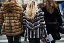 Fab Fur / by Alexi Norton