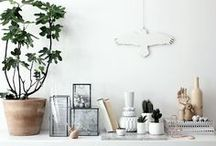 STYLING // vignettes / by Caitlin Brown Interiors