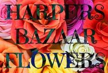 "Harper's Bazaar Flowers / ""The earth laughs in flowers.""  ― Ralph Waldo Emerson / by Anna Dabernig"