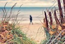 Just Beachy / by Lisa Bacigalupi